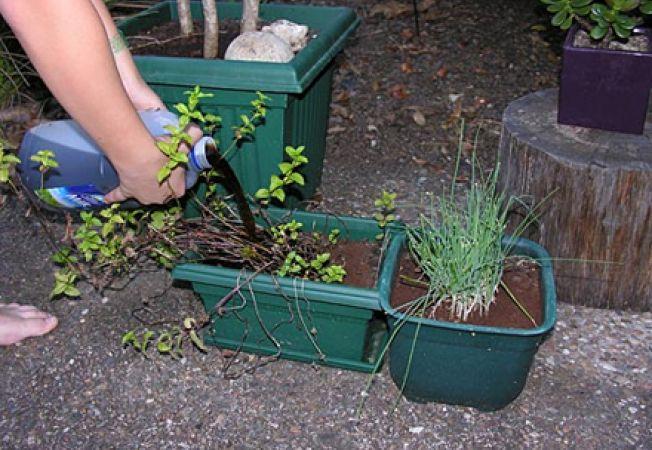 fertilizator