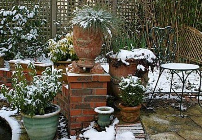 Cum protejezi ghivecele din gradina pe timp de iarna