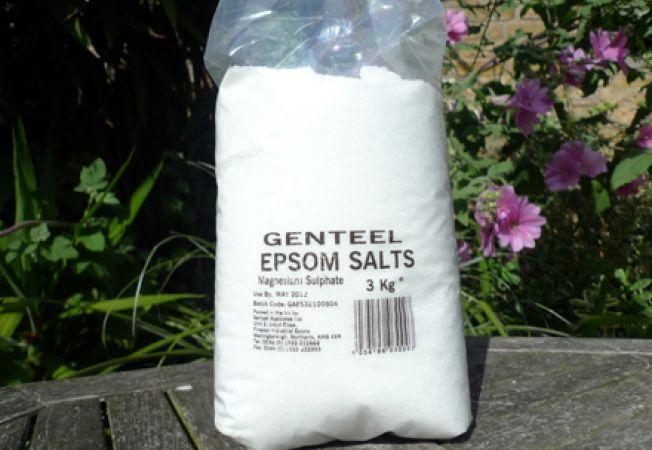 Sarea Epsom, ingrasamant util pentru plantele tale?
