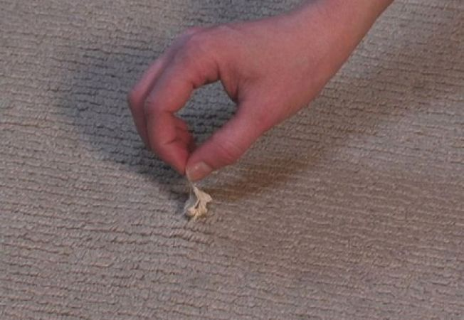 Cum sa cureti guma de mestecat de pe covor