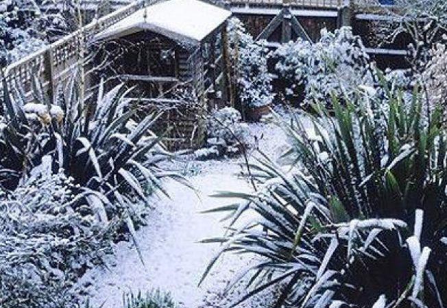 Mulcirea in gradina de iarna