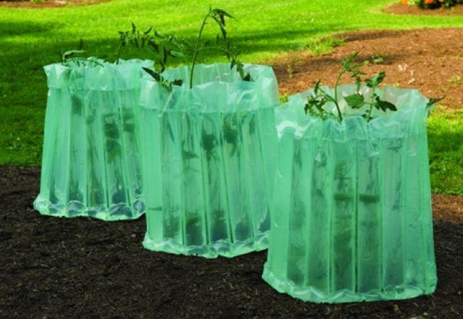11 sfaturi pentru intretinerea gradinii de legume
