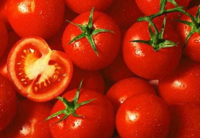 13 secrete despre cresterea si ingrijirea rosiilor