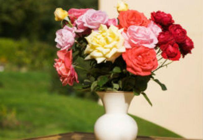 Cum sa pastrezi trandafirii proaspeti cat mai mult timp
