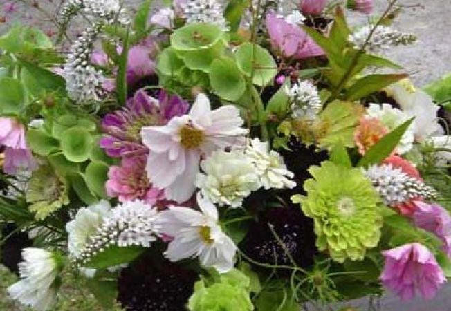 Cum realizezi o gradina cu flori de taiat