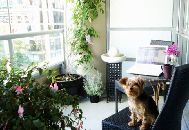 Cum amenajezi biroul in balconul apartamentului