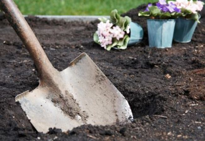 Faina de oase in gradina: utilizare si precautii
