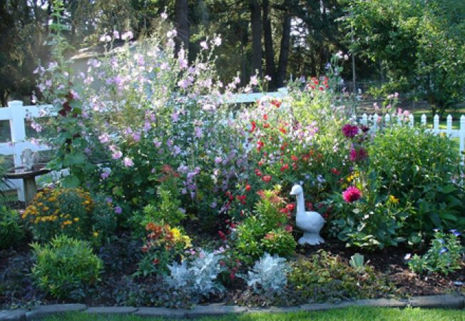 Design pentru o gradina de flori
