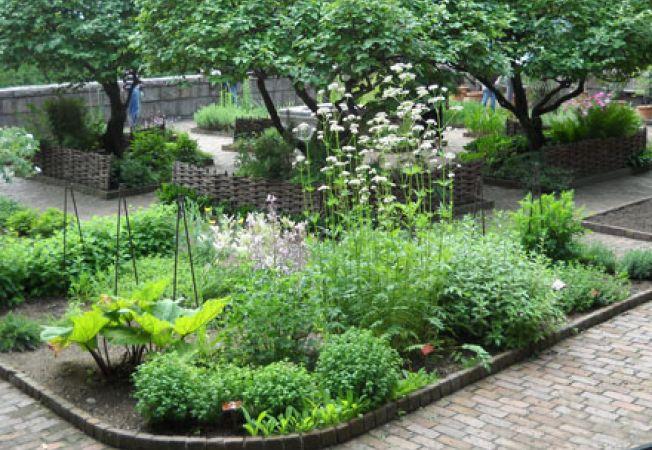 Gradina cu plante pentru gospodarie