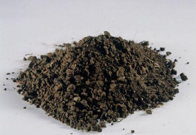Imbunatatirea solului nisipos