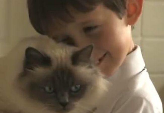 O pisica a reusit sa faca un baietel bolnav de mutism sa vorbeasca (VIDEO)