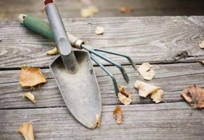 Dezinfectarea uneltelor de gradinarit