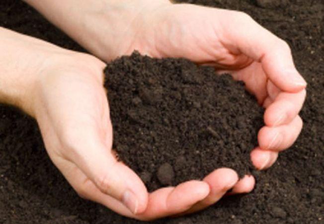 4 ponturi pentru solul din gradina