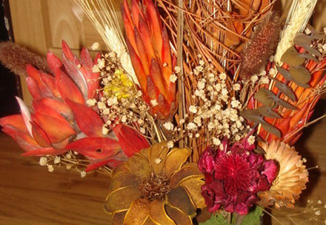 Cele mai frumoase plante uscate