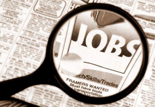 Ai diploma de studii superioare? Afla in ce domenii sunt disponibile cele mai multe joburi!