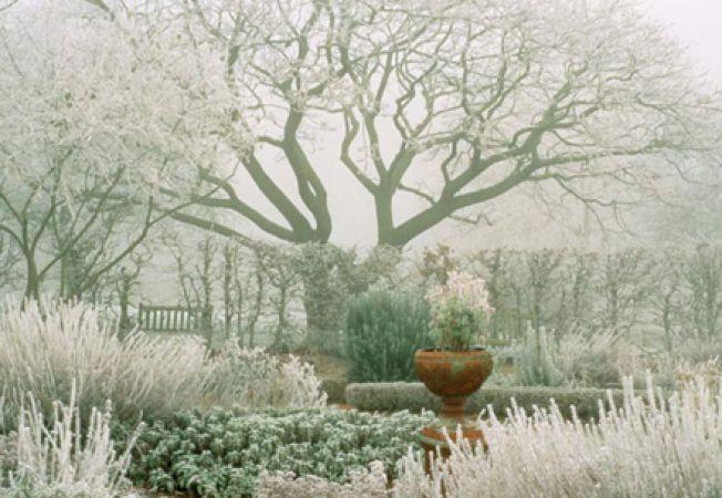 Idei de design pentru gradina ta de iarna