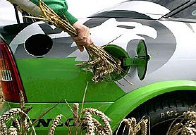 Bio-combustibili