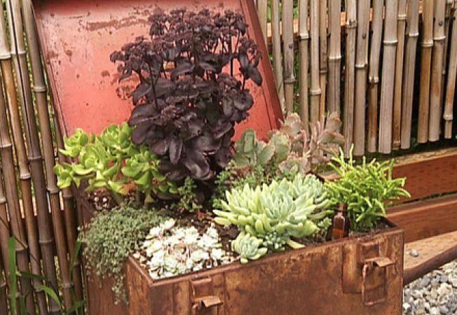 5 obiecte transformate in recipiente pentru plante