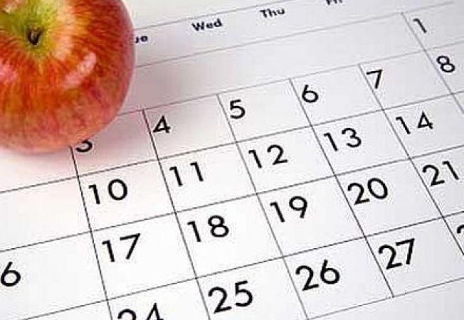 Practic si util: realizeaza-ti propriul calendar pentru gradinarit