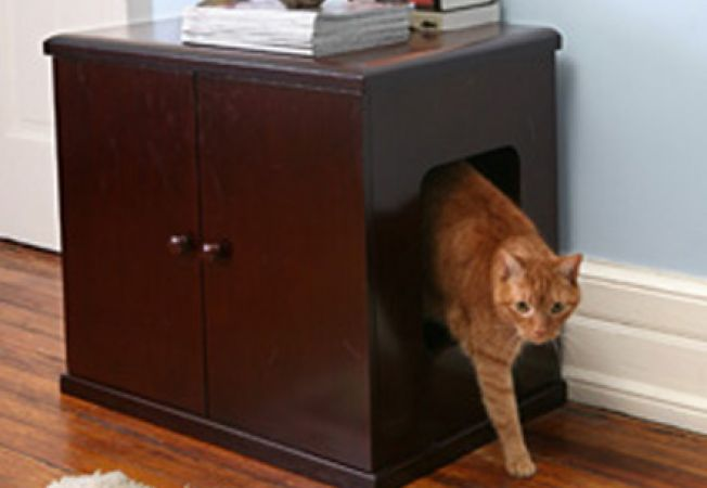 Ascunde cu stil litiera pisicii
