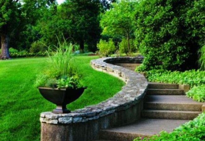 Iarba decorativa in ghiveci poate schimba radical aspectul gradinii tale