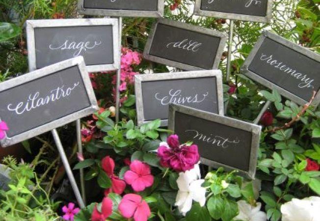 Modele simpatice de etichete pentru gradina
