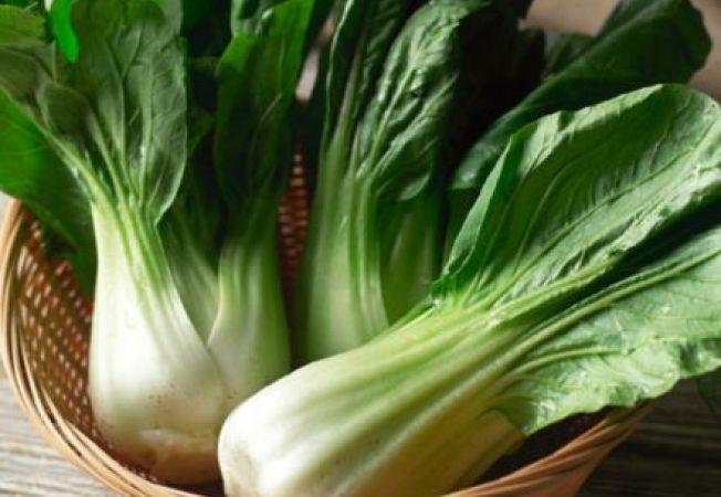 5 soiuri de varza chinezeasca pe care sa le cultivi in aceasta primavara