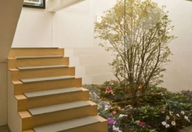 Cum sa iti amenajezi o gradina in casa