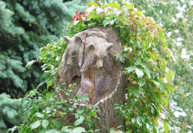 3 moduri prin care sa dai noi utilizari trunchiurilor de copac din gradina