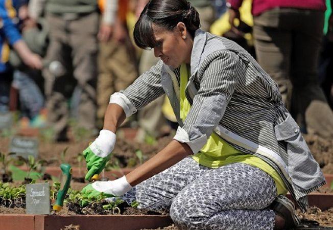 Ce cultiva Michelle Obama in gradina Casei Albe