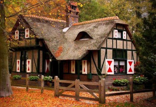 Ponturi pentru a construi o casa in padure