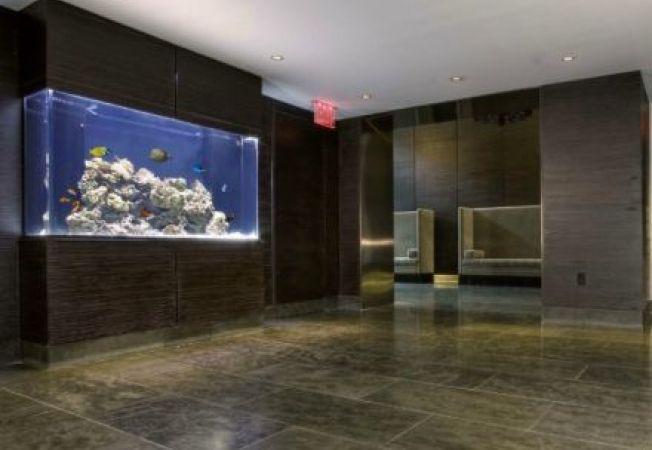 Design acvarii: 4 modele de birou interesante