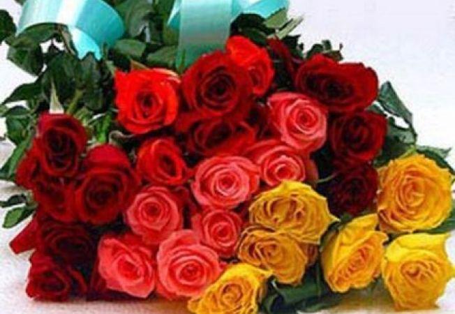 Invata sa alegi florile potrivite in functie de semnificatia culorilor