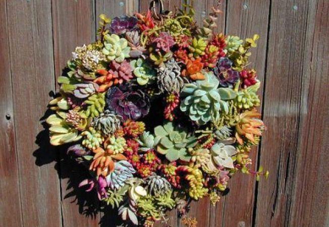 Cum sa faci o coronita decorativa din plante naturale
