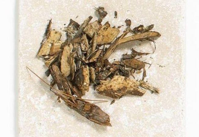 Cele mai bune 7 tipuri de mulci pentru gradina
