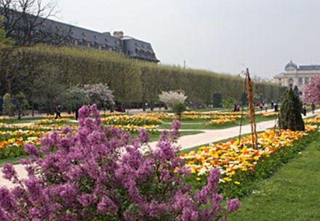 3 gradini superbe pe care nu trebuie sa le ratezi in Paris