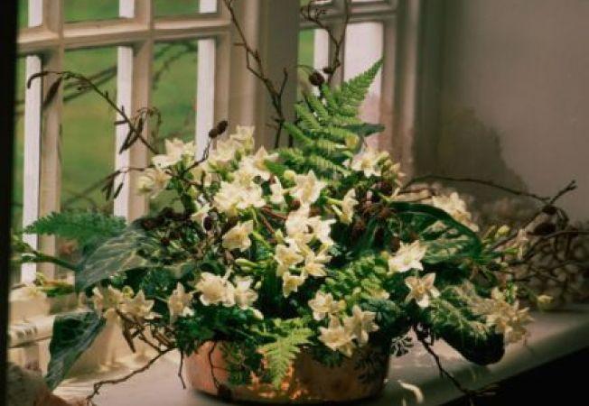 Decoreaza casa si gradina cu ajutorul ghivecelor de flori!