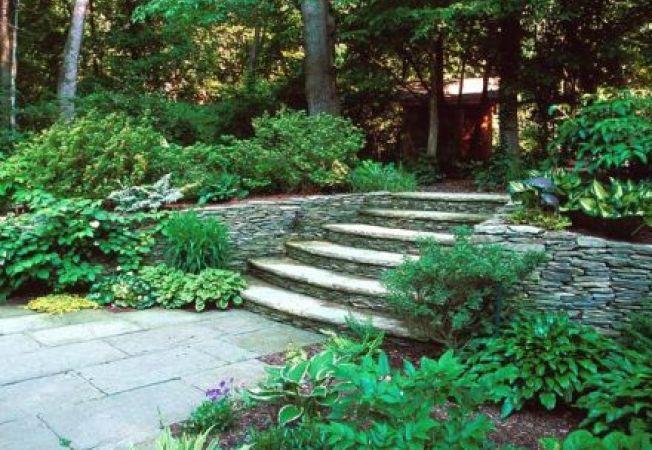 Hardscaping: ghid pentru o gradina cu pavaje, scari si plante