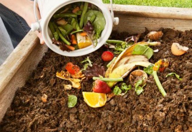 Ce folosesti pentru compost si ce ar trebui sa eviti, pentru a avea o gradina sanatoasa