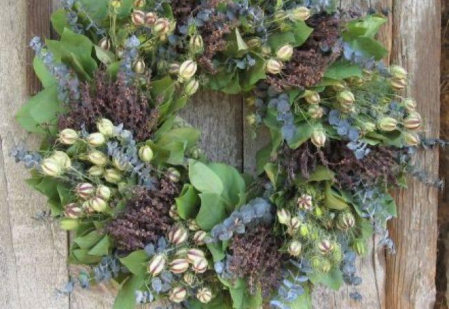 Cum sa folosesti acasa  frunzele de eucalipt