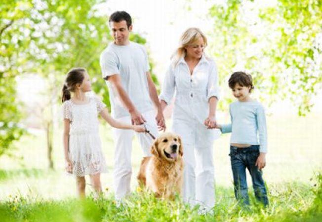 Plimbarea cainelui in parc. 6 reguli de eticheta pe care trebuie sa le respecti