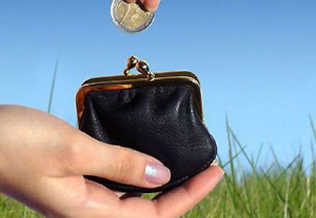 6 ponturi de a economisi bani in amenajarea gradinii