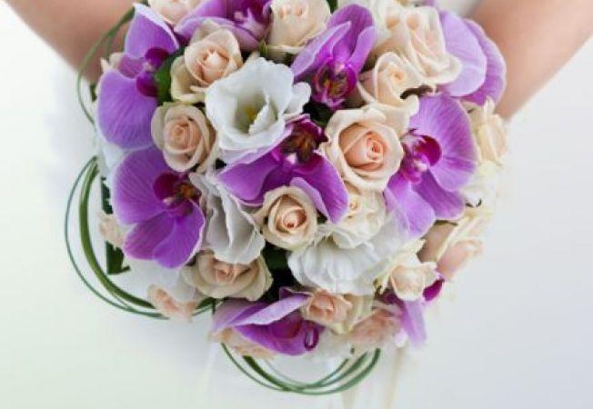 Floraria Vany iti improspateaza si infrumuseteaza viata!