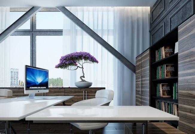 5 pasi de urmat pentru a alege o planta de birou