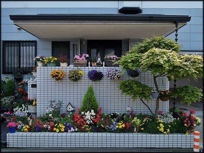 Cele mai bune optiuni pentru amenajarea unei gradini mici