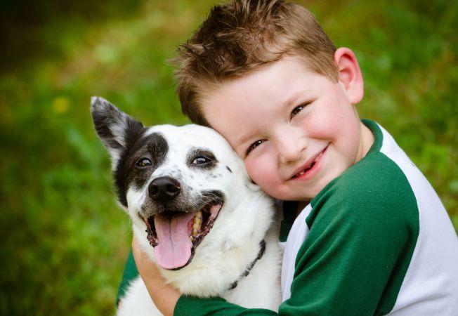Prevenirea muscaturilor de caine: 5 sfaturi pentru stapani