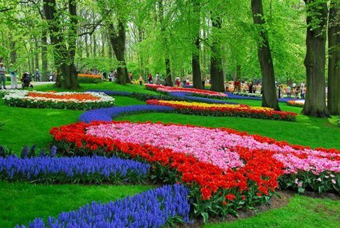 Keukenhof, cea mai frumoasa gradina de flori din lume