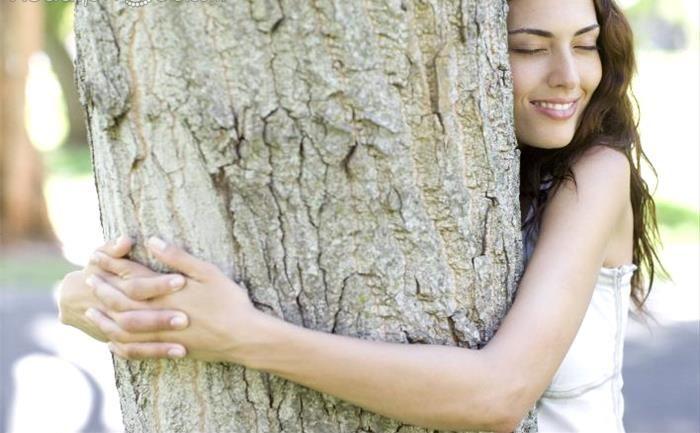 Arborele zodiei tale si ce puteri iti transmite