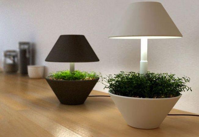Ce sisteme de iluminat sa folosesti pentru plantele de interior