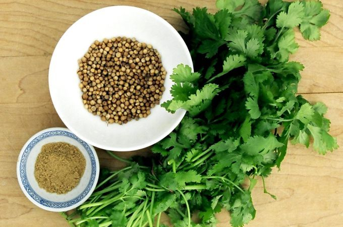 Cum cultivi coriandrul, o planta aromatica desavarsita
